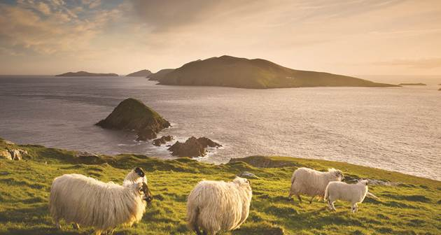 Guided_Trips_Co_Kerry_Ireland