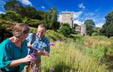 Blarney_Castle_Ireland_Tours