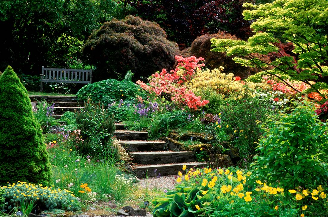 Branklyn Garden Scotland Tour