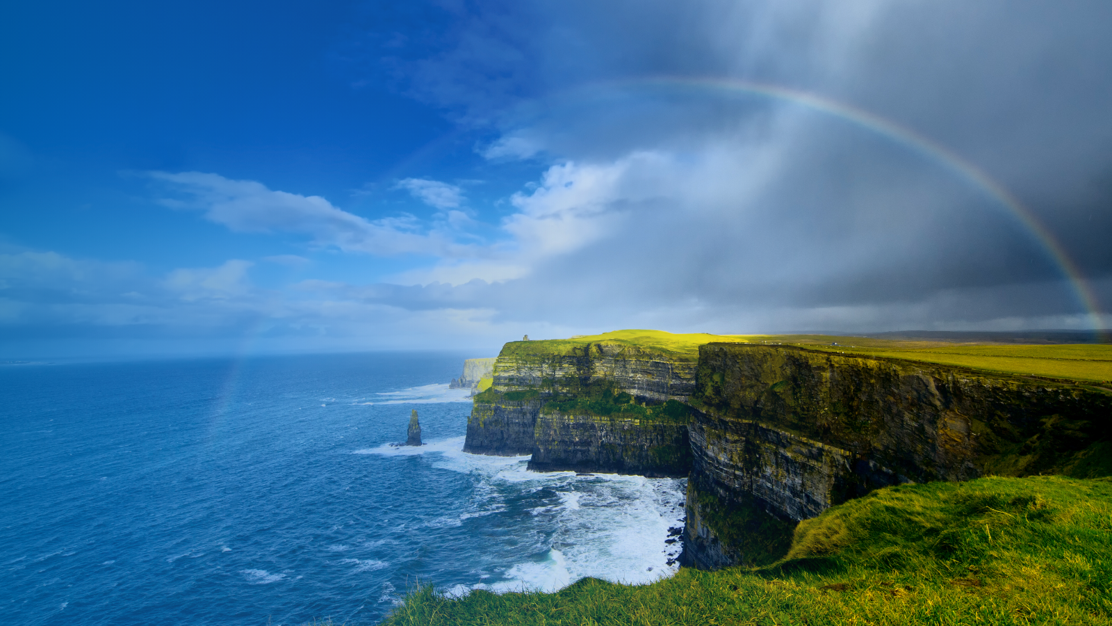Cliffs of Moher in Shannon Ireland